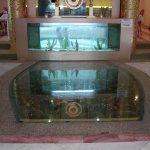 (FL-C005) Restaurant entrance glass floor