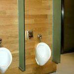 (TC-C 005) Toilet Glass partition