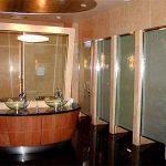 (TC-C 006) Toilet Glass partition