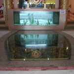 (FL-C005) Restaurant entrance glass floor