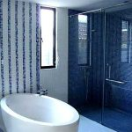 (SS-R002) Top hung frameless shower screen