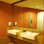 (TM-R011) Frameless toilet mirror